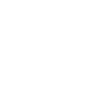 Pomegranate Studio Logo